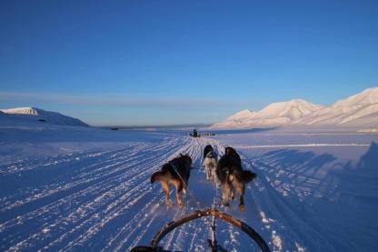 Svalbard, Spitsberen